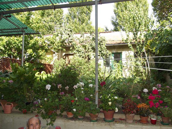 Pistoia vendita villetta con giardino ovest centro - Case in vendita pistoia giardino ...